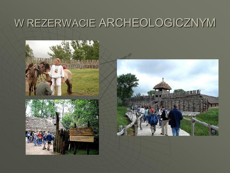 W REZERWACIE ARCHEOLOGICZNYM