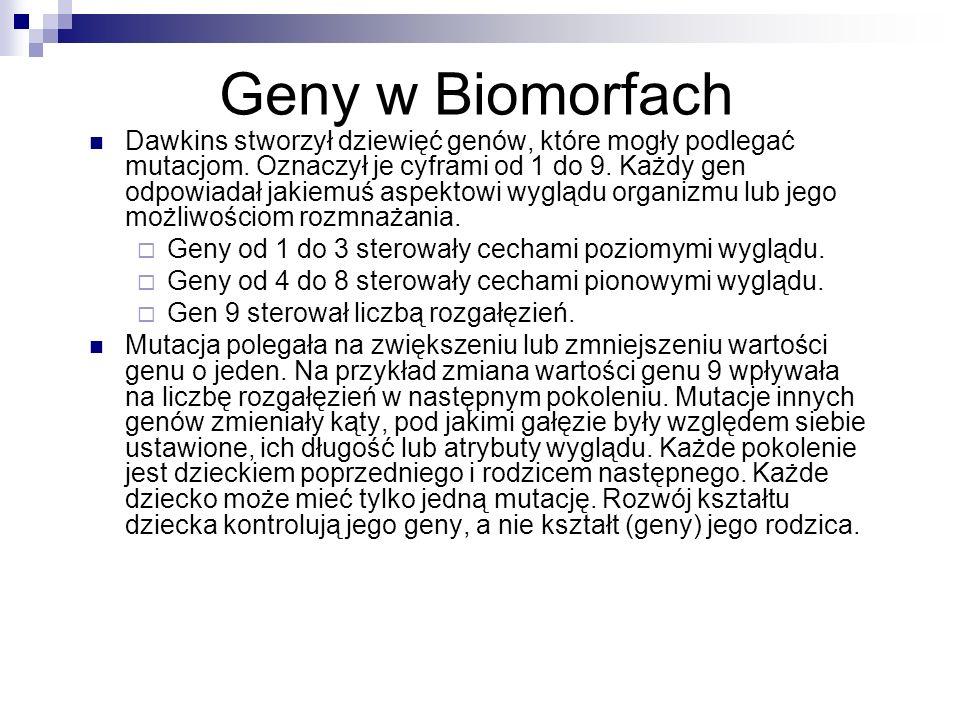 Geny w Biomorfach