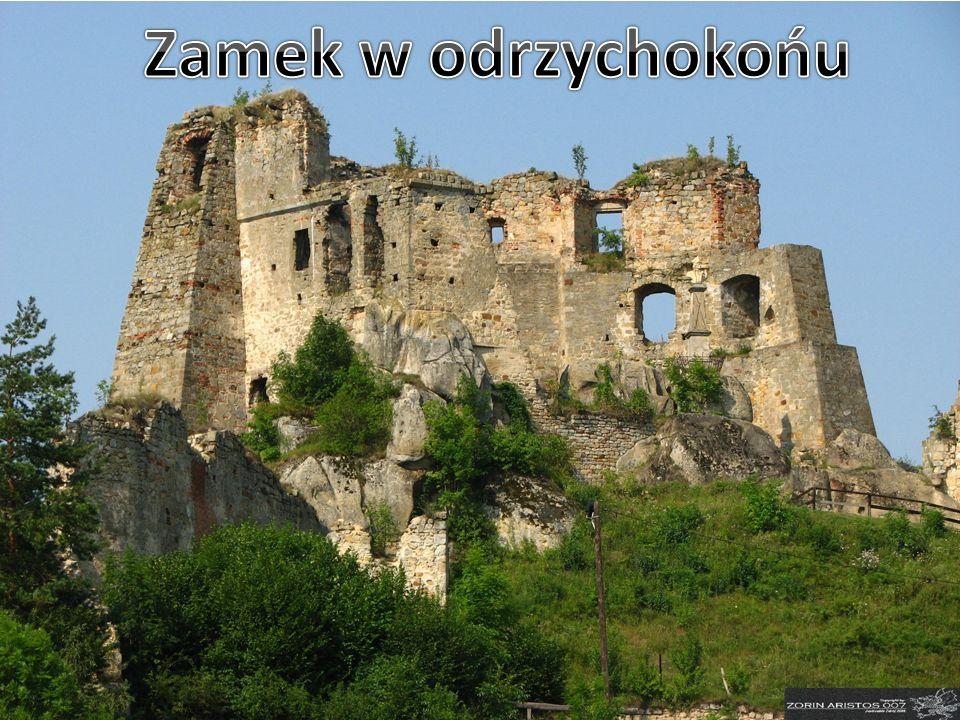 Zamek w odrzychokońu