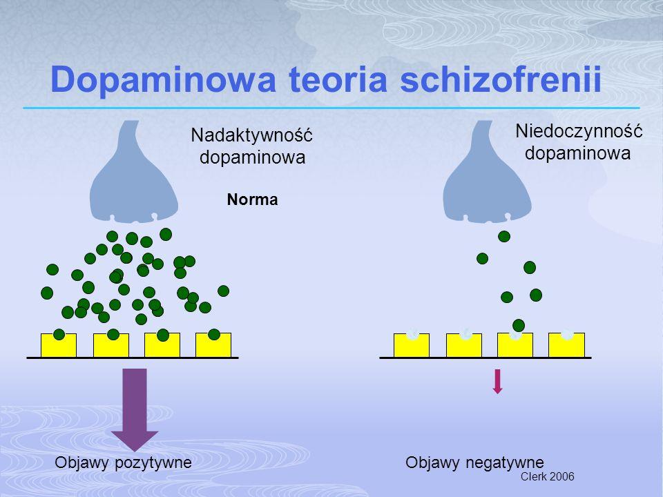 Dopaminowa teoria schizofrenii