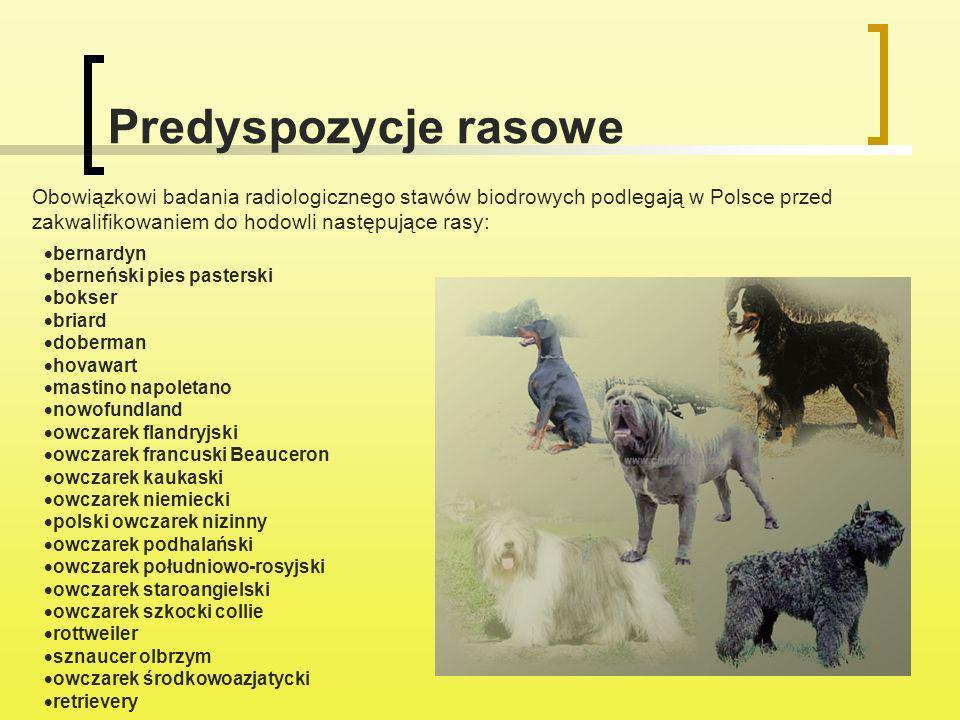 Predyspozycje rasowe Obowiązkowi badania radiologicznego stawów biodrowych podlegają w Polsce przed zakwalifikowaniem do hodowli następujące rasy: