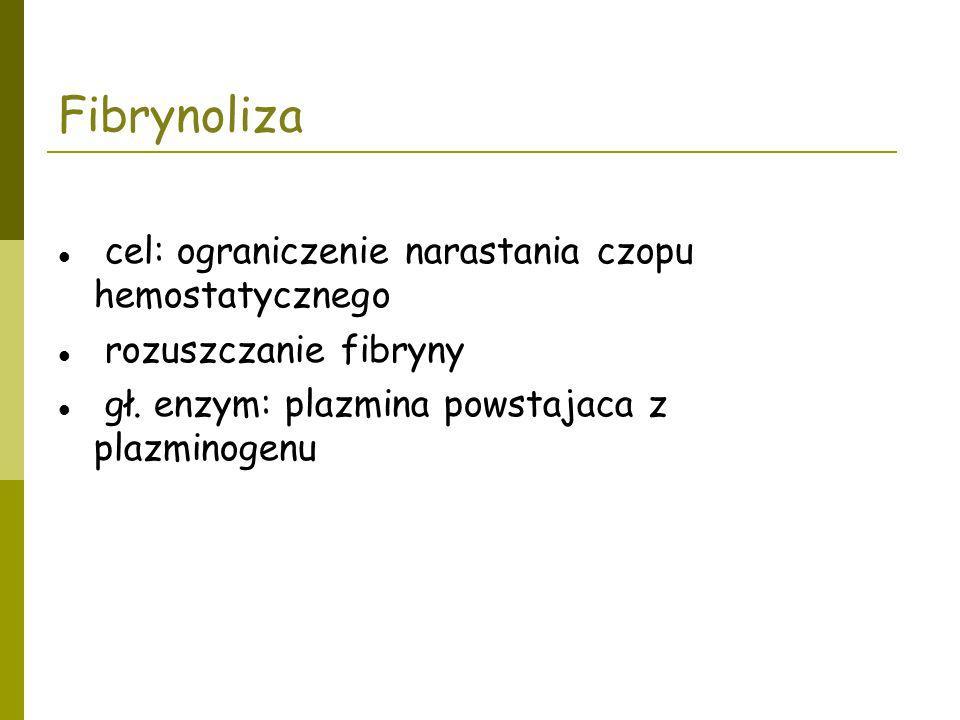 Fibrynoliza cel: ograniczenie narastania czopu hemostatycznego