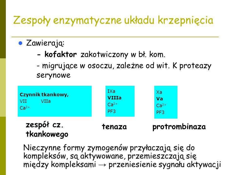Zespoły enzymatyczne układu krzepnięcia