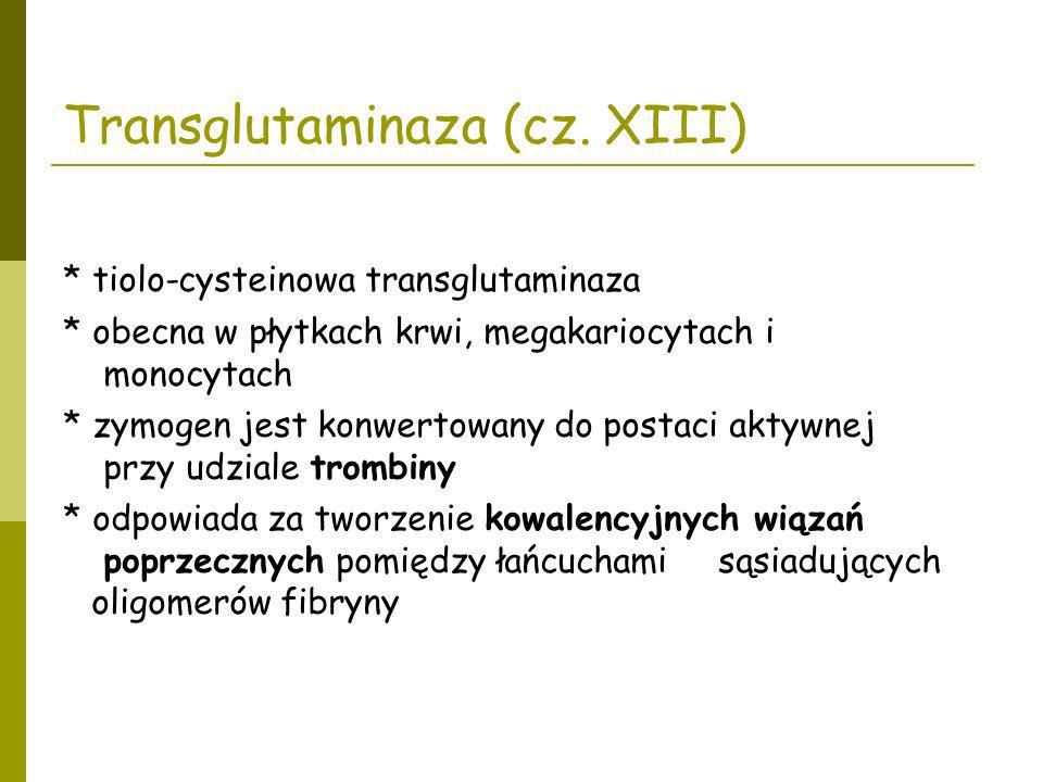 Transglutaminaza (cz. XIII)