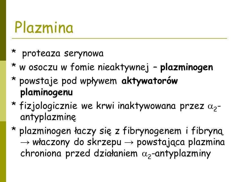 Plazmina * proteaza serynowa