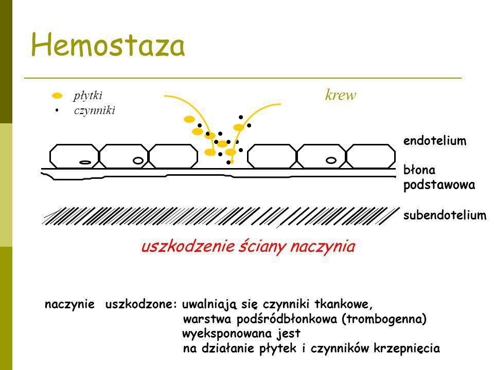 Hemostaza podstawowa krew uszkodzenie ściany naczynia płytki czynniki