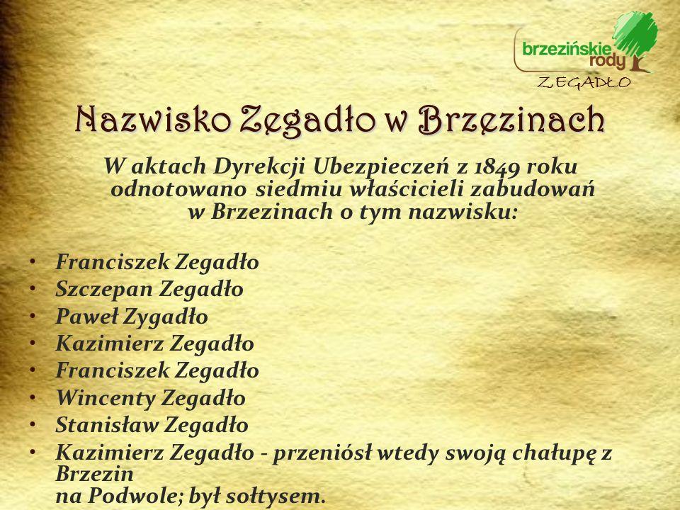 Nazwisko Zegadło w Brzezinach