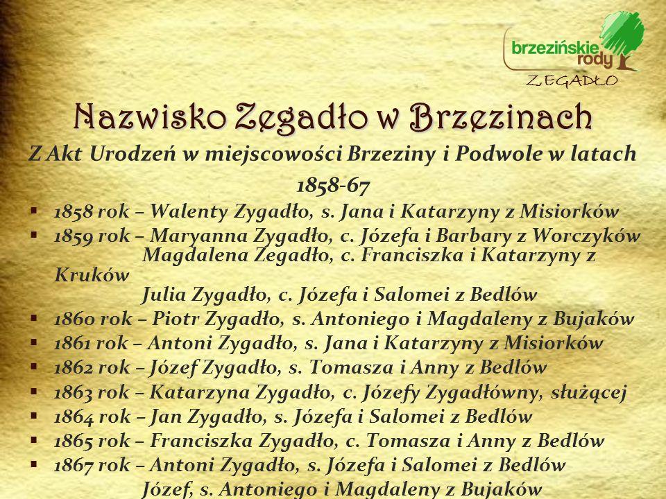Z Akt Urodzeń w miejscowości Brzeziny i Podwole w latach 1858-67