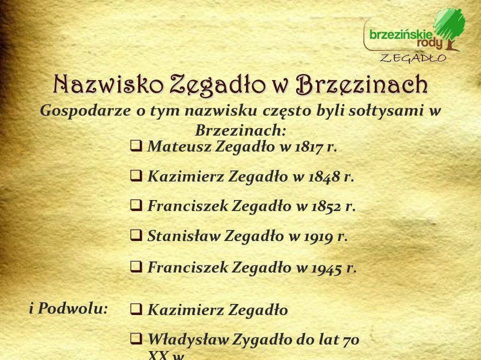 Gospodarze o tym nazwisku często byli sołtysami w Brzezinach: