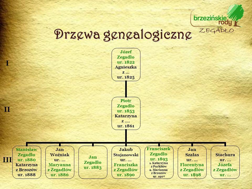 Drzewa genealogiczne ZEGADŁO I II III