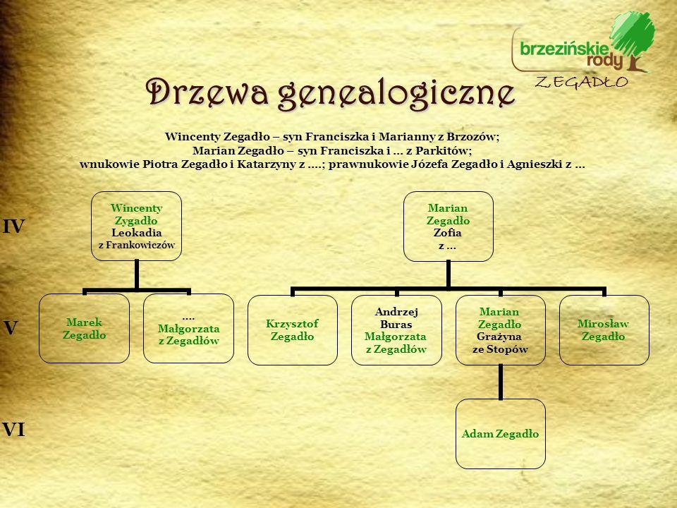 Drzewa genealogiczne ZEGADŁO IV V VI