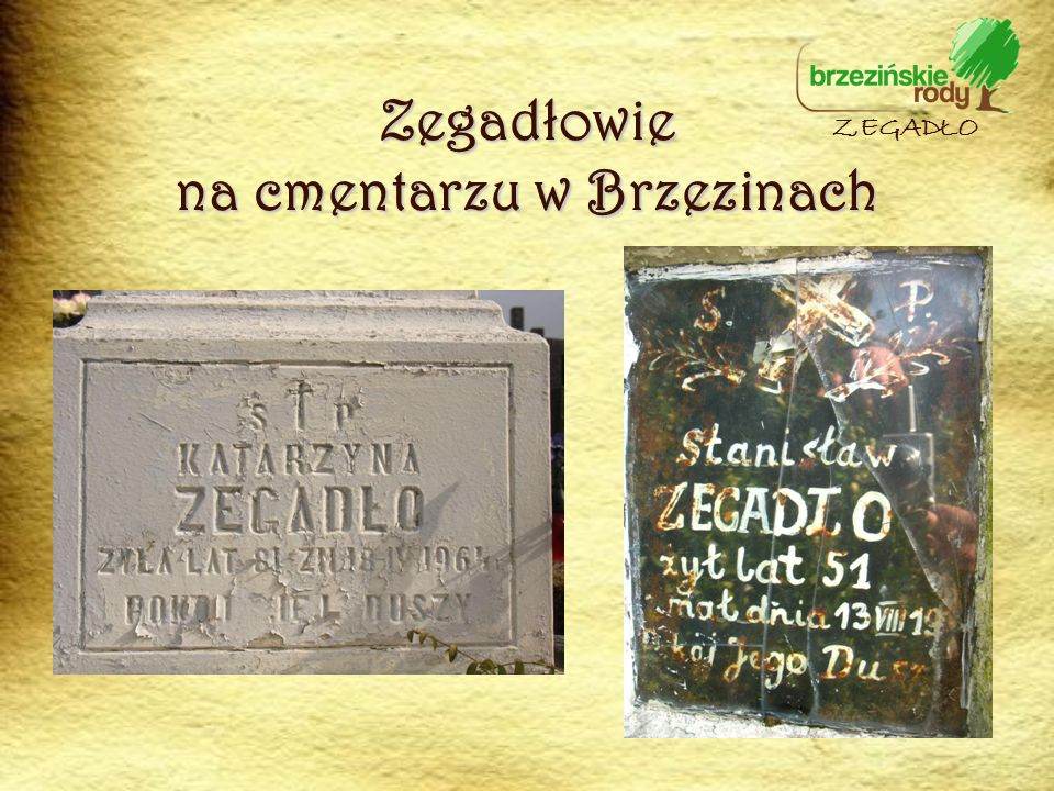 Zegadłowie na cmentarzu w Brzezinach