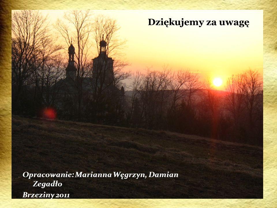 Dziękujemy za uwagę Opracowanie: Marianna Węgrzyn, Damian Zegadło