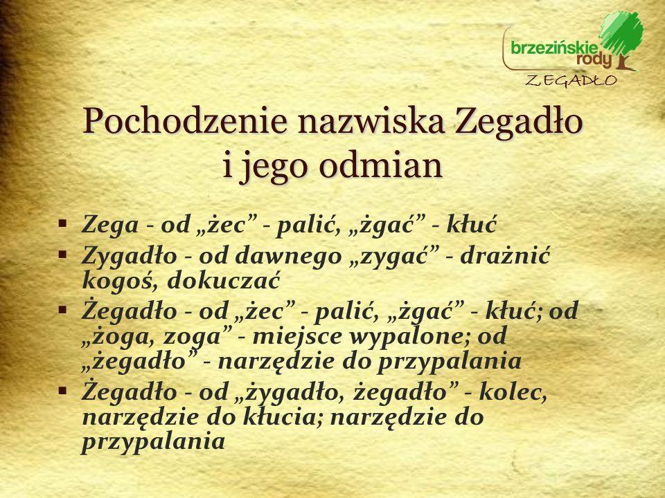 Pochodzenie nazwiska Zegadło i jego odmian