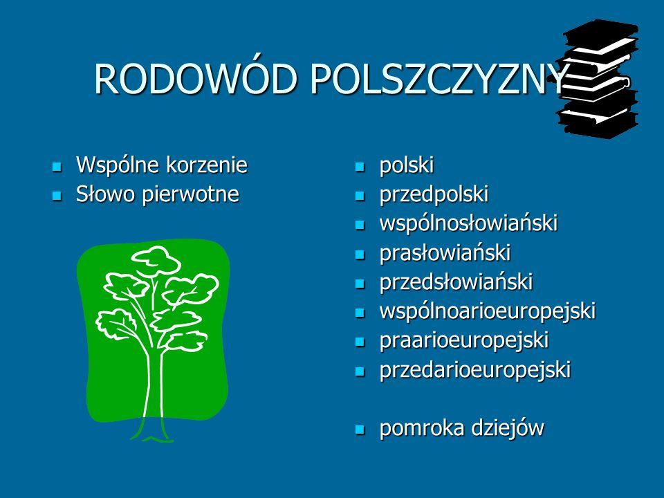 RODOWÓD POLSZCZYZNY Wspólne korzenie Słowo pierwotne polski