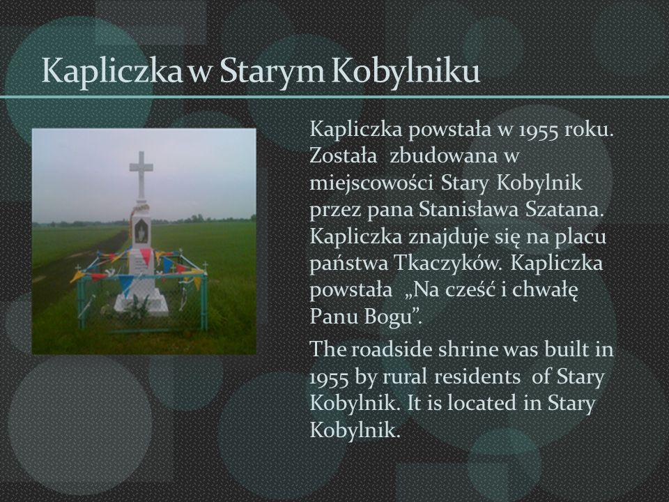 Kapliczka w Starym Kobylniku