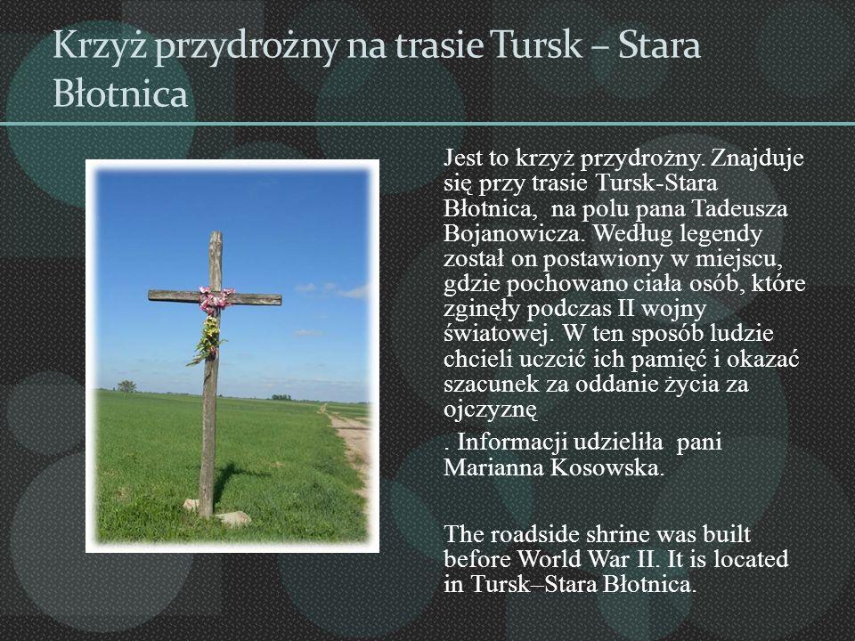 Krzyż przydrożny na trasie Tursk – Stara Błotnica
