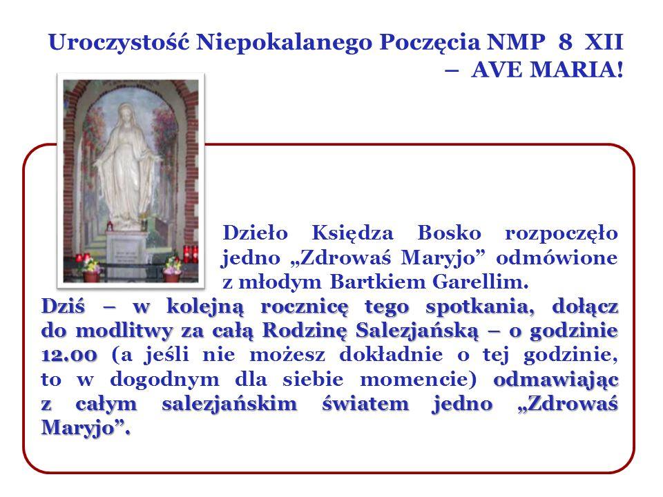 Uroczystość Niepokalanego Poczęcia NMP 8 XII – AVE MARIA!