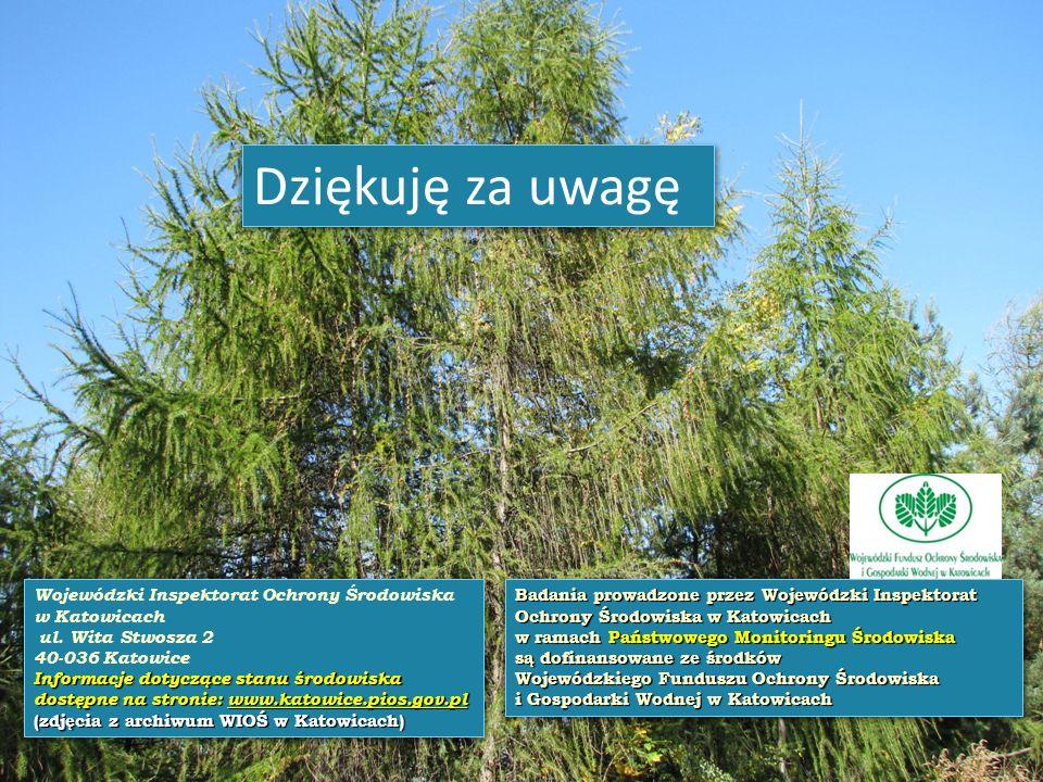 Dziękuję za uwagę Wojewódzki Inspektorat Ochrony Środowiska w Katowicach. ul. Wita Stwosza 2. 40-036 Katowice.