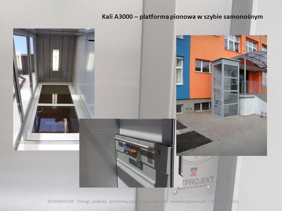 Kali A3000 – platforma pionowa w szybie samonośnym