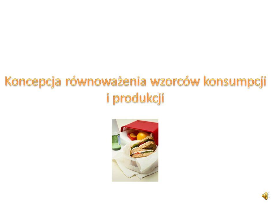 Koncepcja równoważenia wzorców konsumpcji i produkcji