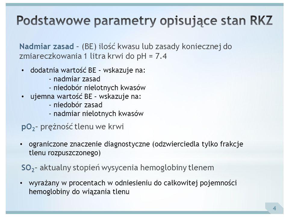 Podstawowe parametry opisujące stan RKZ