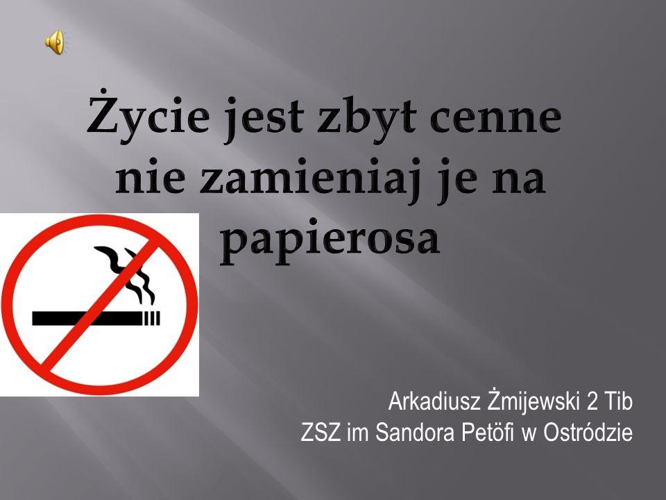 Arkadiusz Żmijewski 2 Tib ZSZ im Sandora Petöfi w Ostródzie