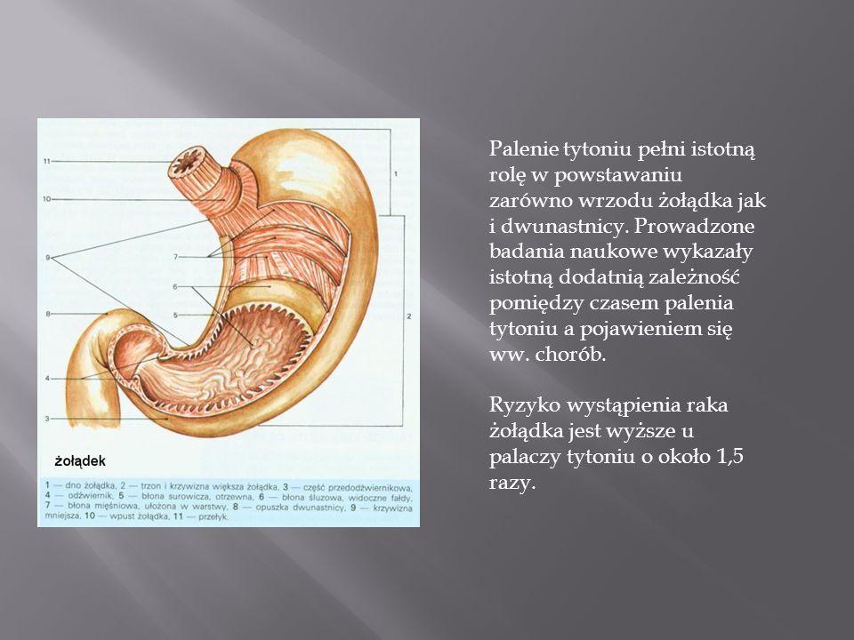 Palenie tytoniu pełni istotną rolę w powstawaniu zarówno wrzodu żołądka jak i dwunastnicy.