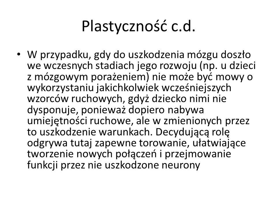 Plastyczność c.d.