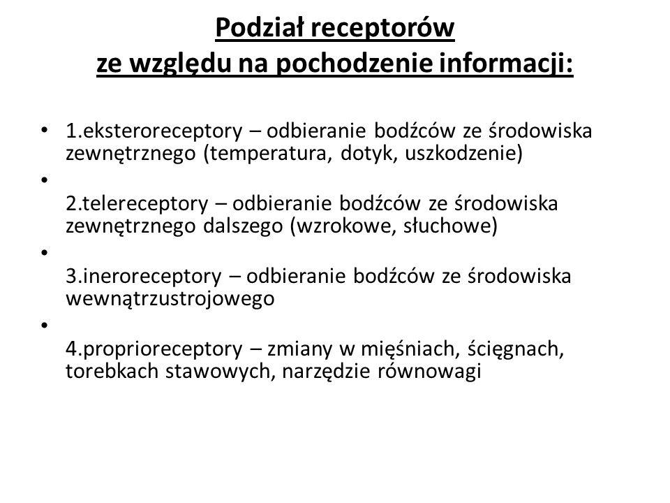 Podział receptorów ze względu na pochodzenie informacji: