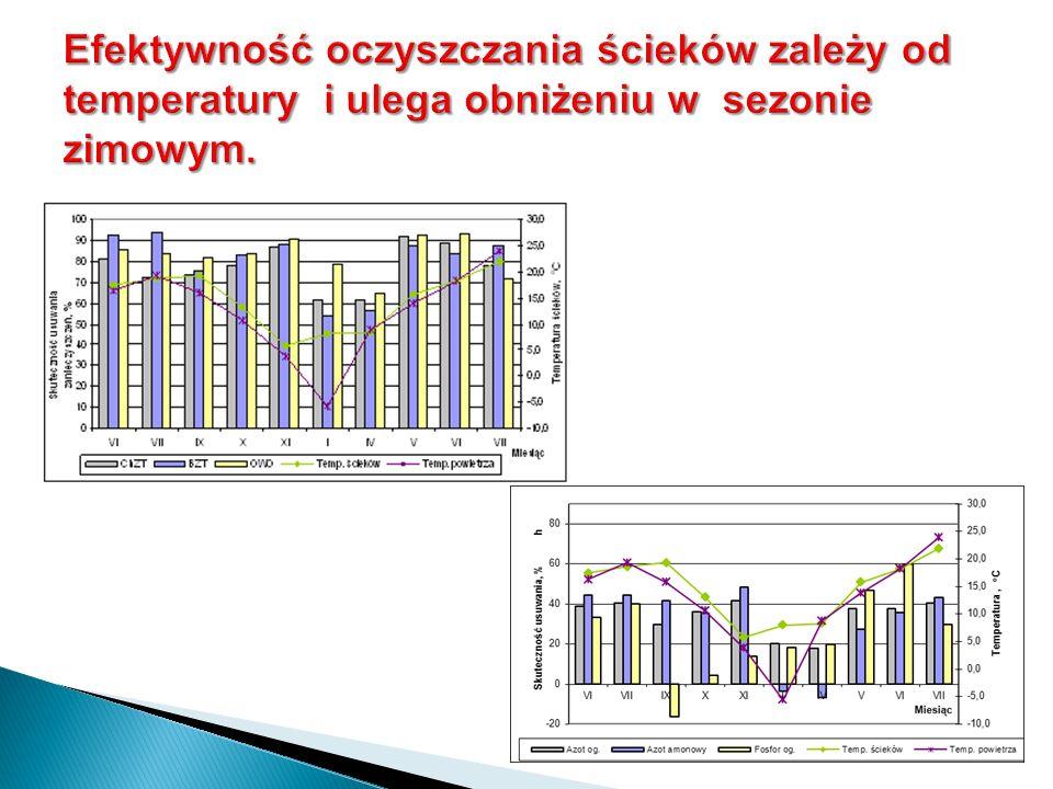 Efektywność oczyszczania ścieków zależy od temperatury i ulega obniżeniu w sezonie zimowym.