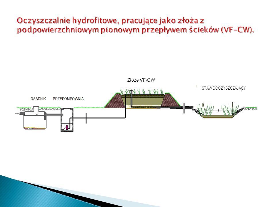 Oczyszczalnie hydrofitowe, pracujące jako złoża z podpowierzchniowym pionowym przepływem ścieków (VF-CW).