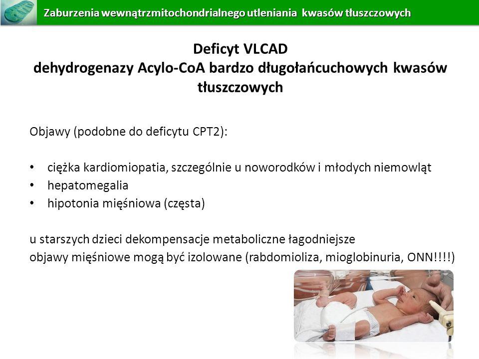 dehydrogenazy Acylo-CoA bardzo długołańcuchowych kwasów tłuszczowych