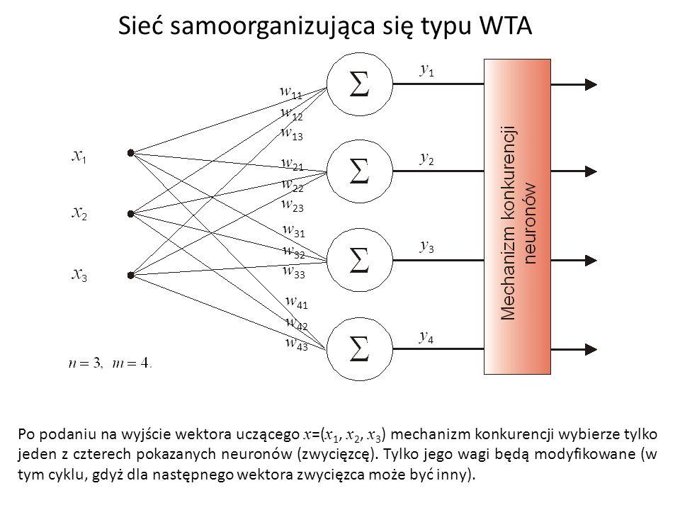 Sieć samoorganizująca się typu WTA