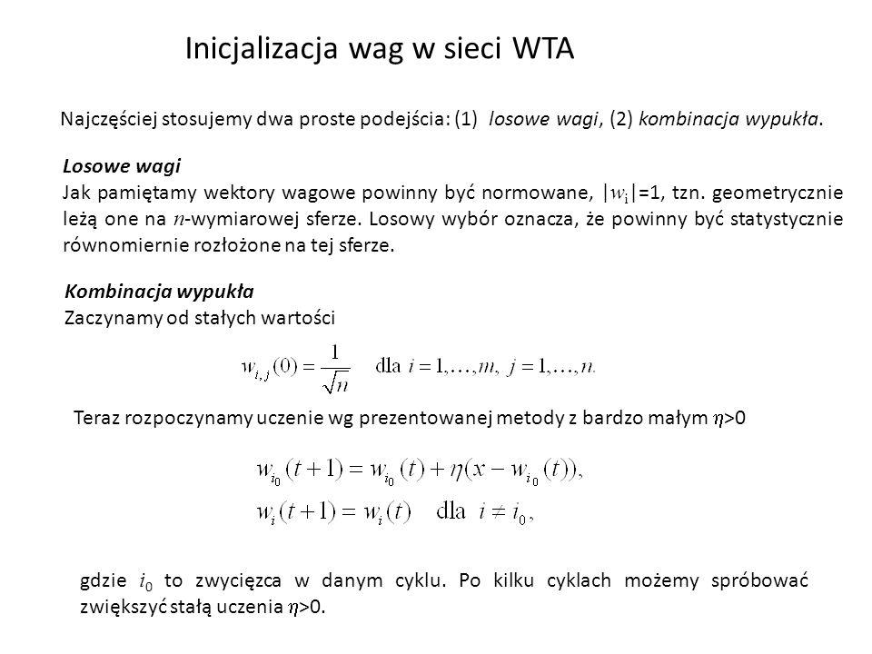 Inicjalizacja wag w sieci WTA