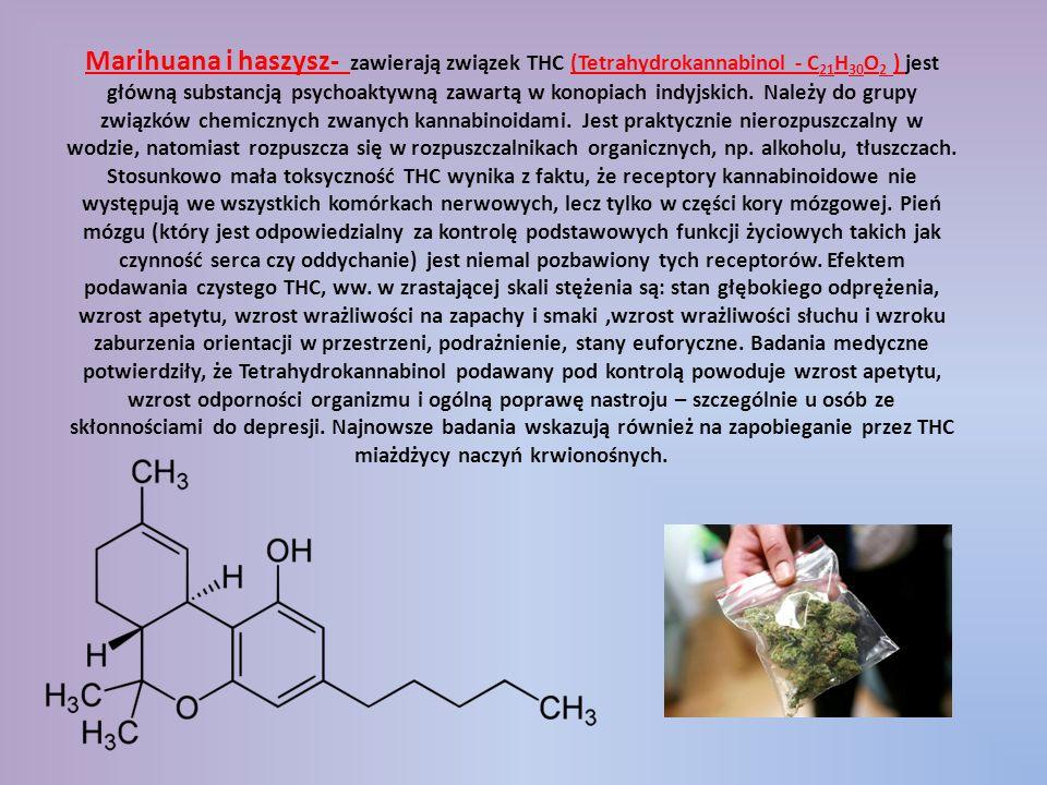 Marihuana i haszysz- zawierają związek THC (Tetrahydrokannabinol - C21H30O2 ) jest główną substancją psychoaktywną zawartą w konopiach indyjskich.