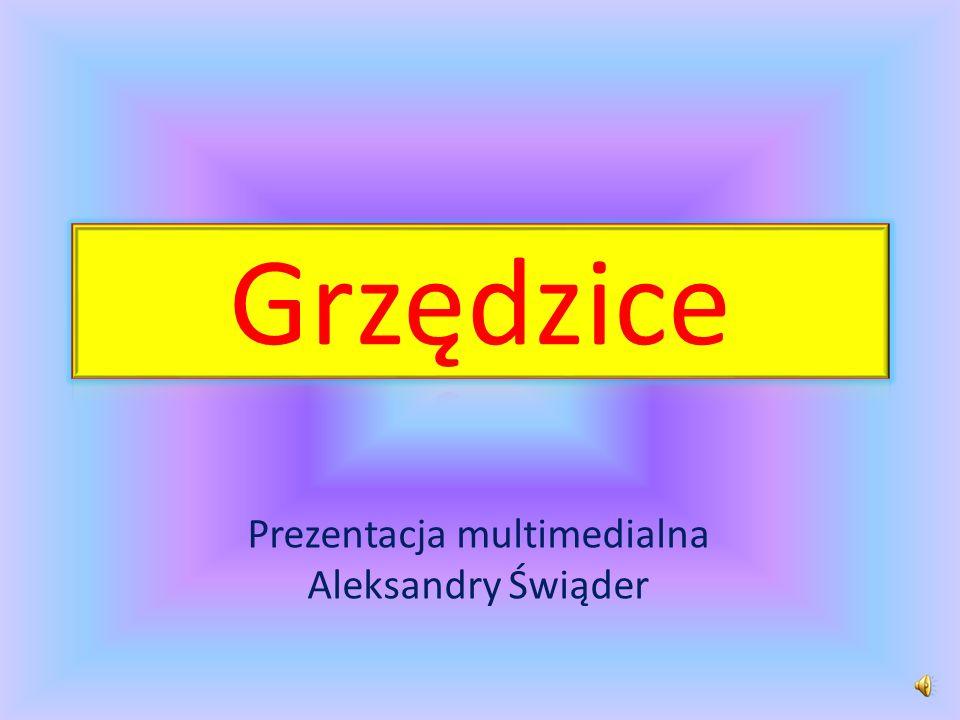 Prezentacja multimedialna Aleksandry Świąder