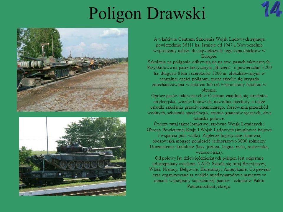Poligon Drawski