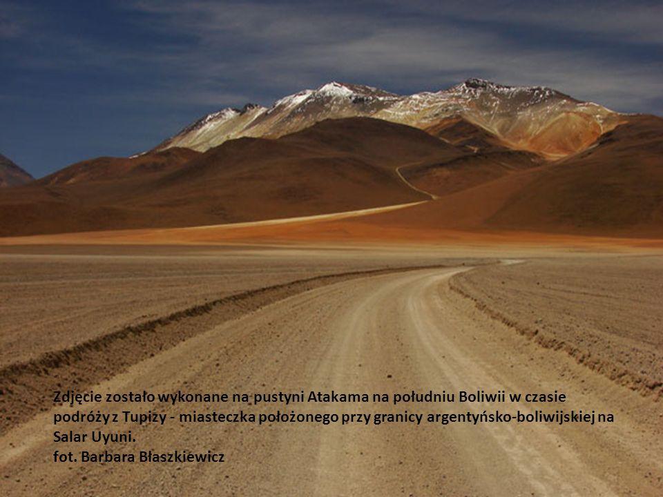 Zdjęcie zostało wykonane na pustyni Atakama na południu Boliwii w czasie podróży z Tupizy - miasteczka położonego przy granicy argentyńsko-boliwijskiej na Salar Uyuni.
