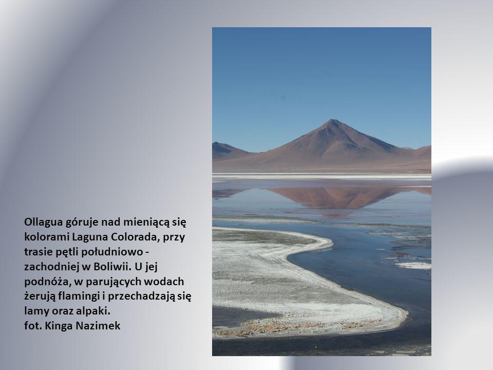 Ollagua góruje nad mieniącą się kolorami Laguna Colorada, przy trasie pętli południowo - zachodniej w Boliwii.