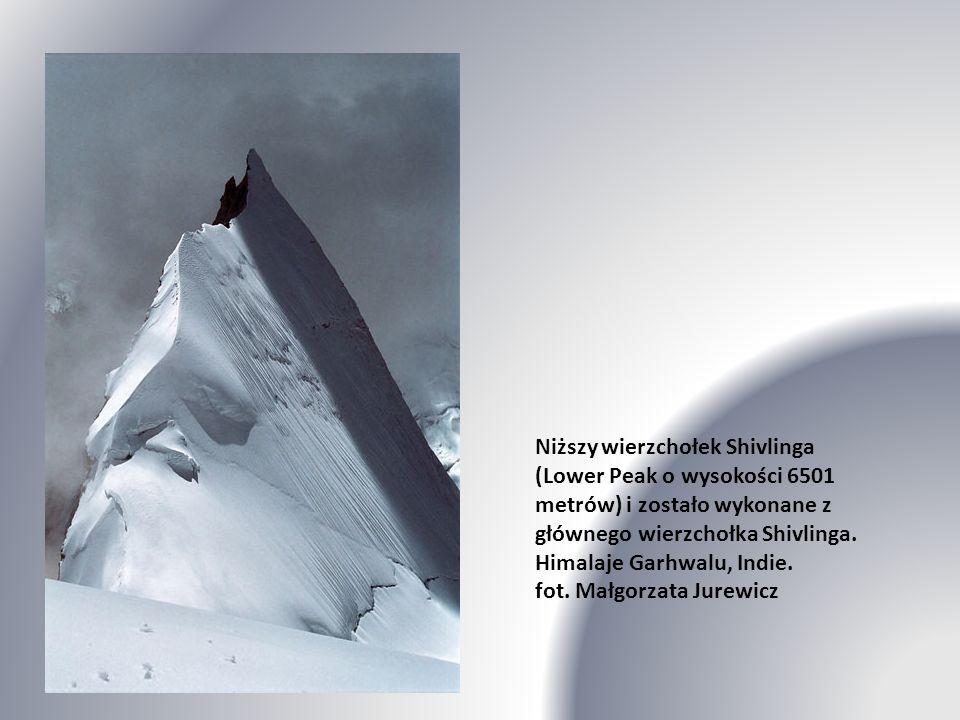Niższy wierzchołek Shivlinga (Lower Peak o wysokości 6501 metrów) i zostało wykonane z głównego wierzchołka Shivlinga.