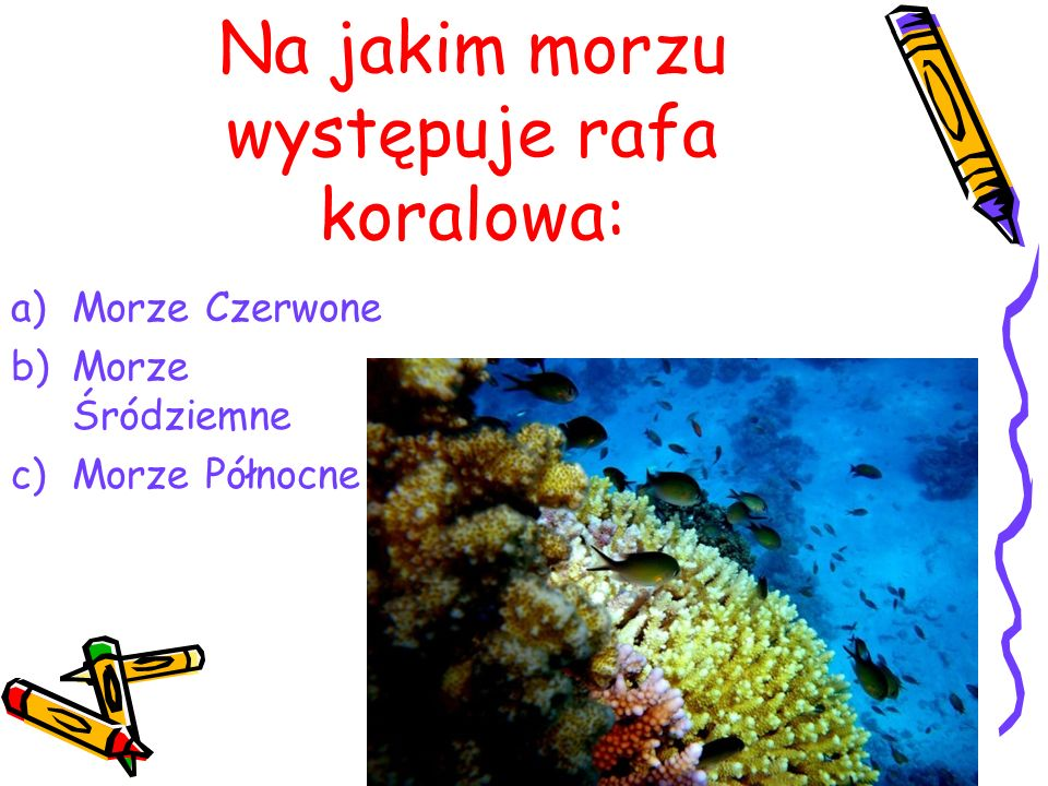 Na jakim morzu występuje rafa koralowa: