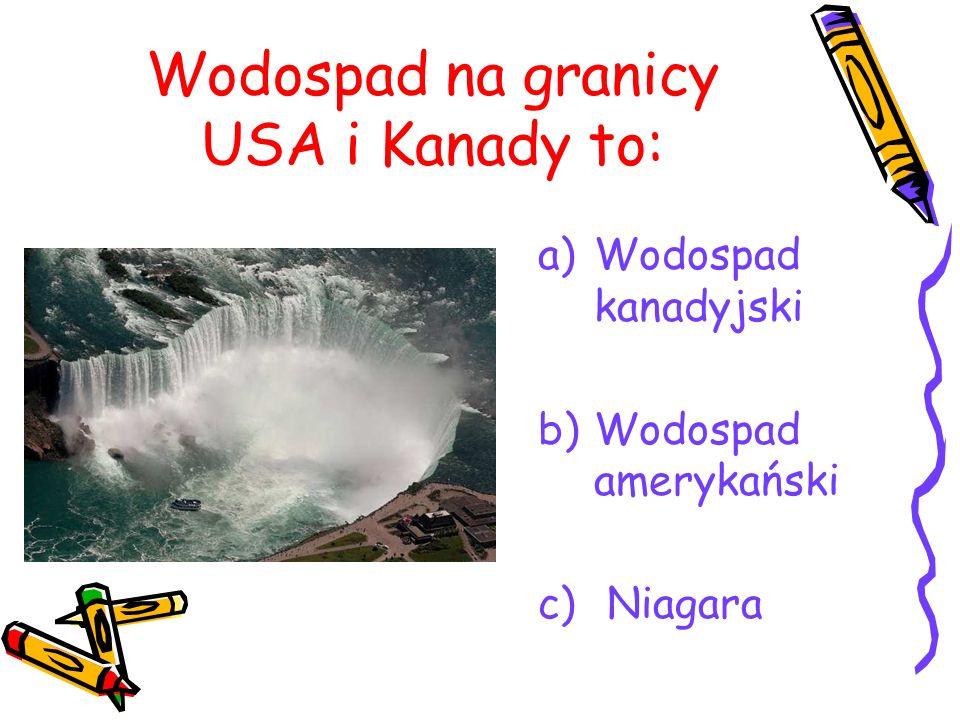 Wodospad na granicy USA i Kanady to: