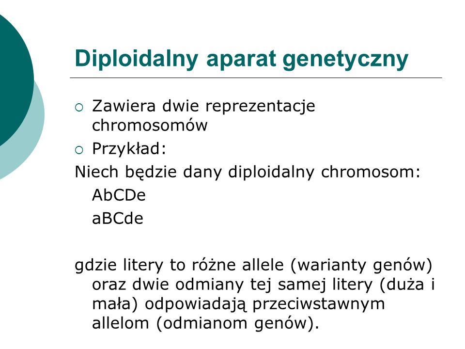 Diploidalny aparat genetyczny