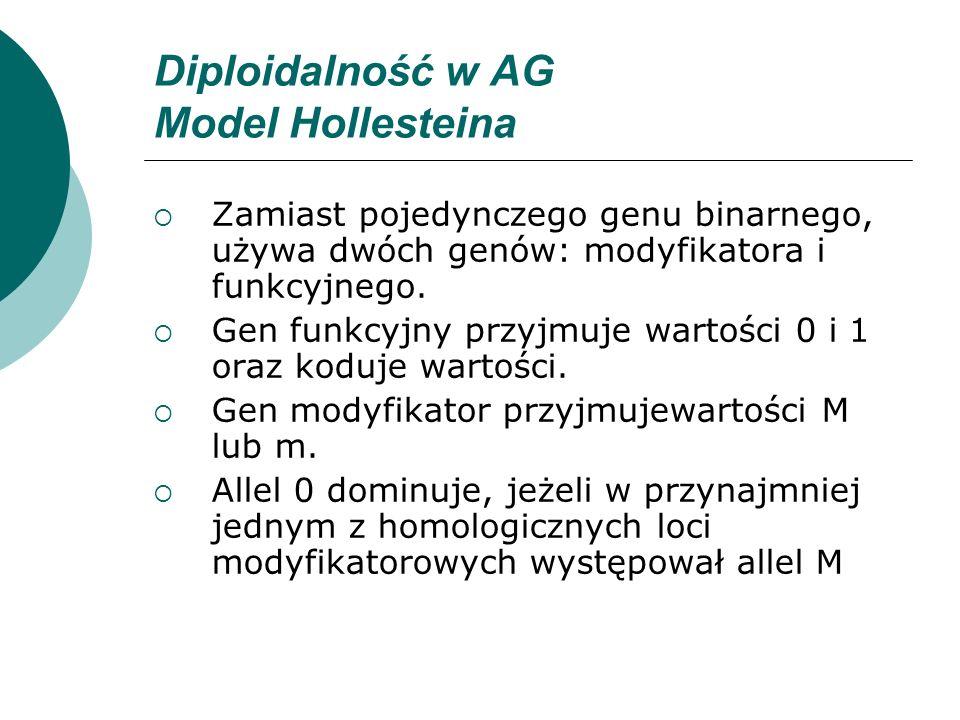 Diploidalność w AG Model Hollesteina