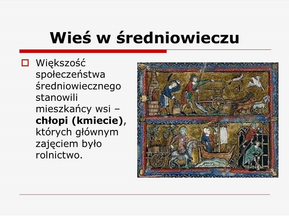 Wieś w średniowieczu Większość społeczeństwa średniowiecznego stanowili mieszkańcy wsi – chłopi (kmiecie), których głównym zajęciem było rolnictwo.