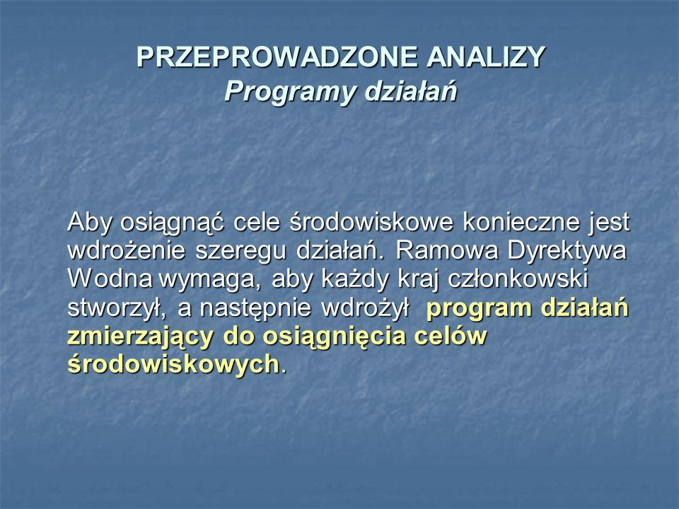 PRZEPROWADZONE ANALIZY Programy działań