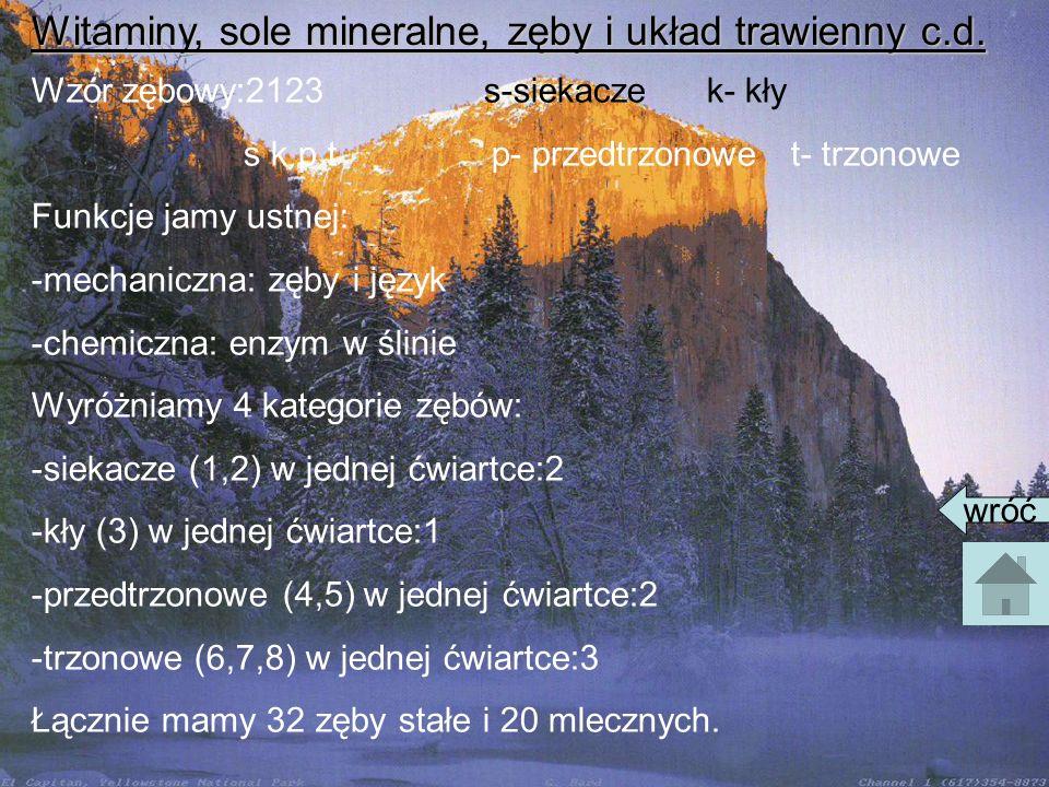Witaminy, sole mineralne, zęby i układ trawienny c.d.