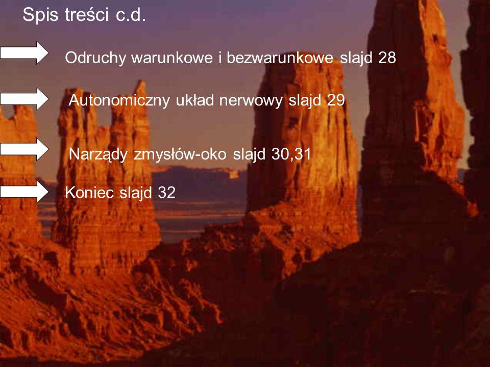 Spis treści c.d. Odruchy warunkowe i bezwarunkowe slajd 28