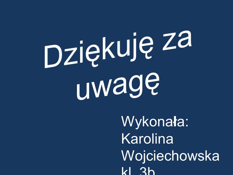 Dziękuję za uwagę Wykonała: Karolina Wojciechowska kl. 3b
